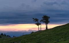 Sunrise Creux de van (TM Photography Vision) Tags: sunrise sony alpha 850 baselriehenschweiz zeiss 135 18 creuxdevan jura neuchatel neuenburg sonnenaufgang creux de van