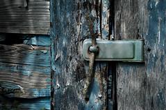 MacGyver's latch (hutchphotography2020) Tags: rottenwood latch twig peeledpaint splinters nikon