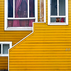 (msdonnalee) Tags: architecturaldetail squareformat yellowhouse window curtain facade fachada facciate ventana fenster fentre gelb yellow giallo amarillo amarelo jaune explore