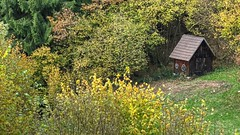 Hay Sheds of Murg Valley 13 (MJWoerner49) Tags: blackforest hut murgtal murg murgvalley northernblackforest gernsbach reichental forbach gausbach barn shed hay haybarn hayshed autumn