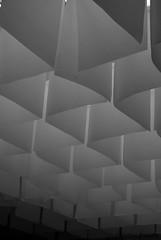 Texture (cabano-82) Tags: venice venezia biennale art arte italy texture nikond60 blackwhite