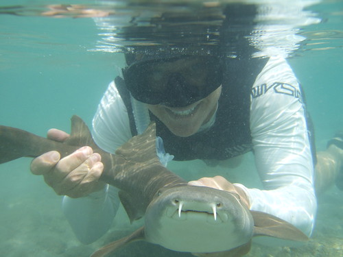 AdventureMike with a nurse shark