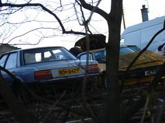 1982 Ford Cortina 1.6 Crusader (GoldScotland71) Tags: ford cortina 1982 1980s crusader roh642y hly611v