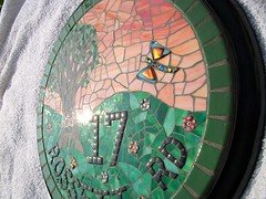 Stained glass and glass tile mosaic house number  (number 17)  Grouted (fiona parkes) Tags: flowers flower glass plaque dragonfly mosaic circles mosaics stainedglass stained tiles 17 housename crosby housenumber grout millefiori glasstiles number17 stainedglassmosaic housenumber17