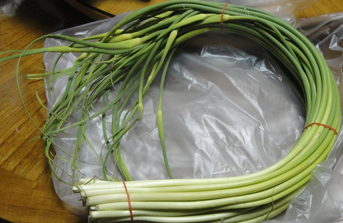 蒜苔Garlic scapes