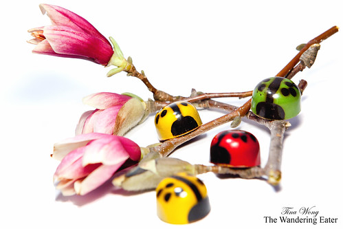 Chocolate Ladybugs on flowers