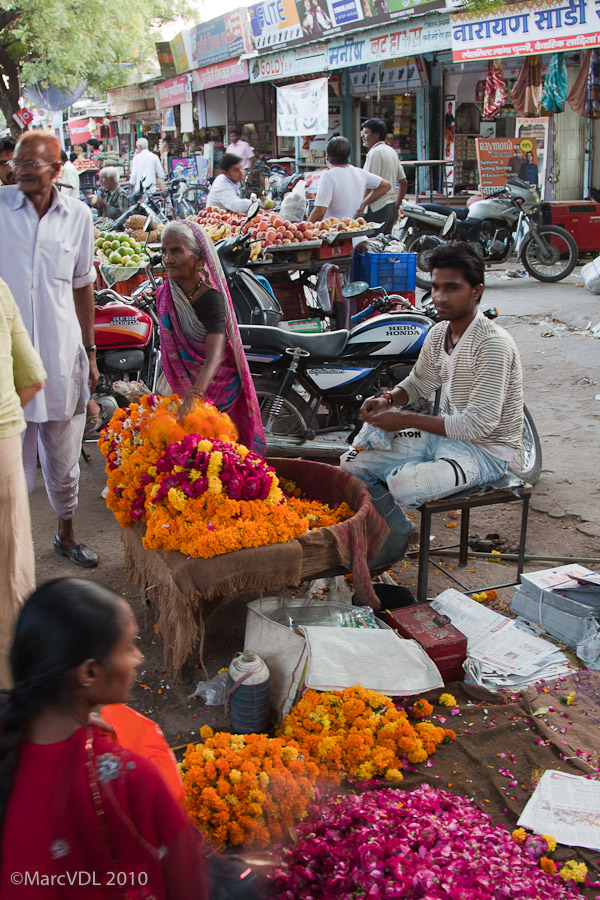 Rajasthan 2010 - Voyage au pays des Maharadjas - 2ème Partie 5598385279_db7b8d1fed_o