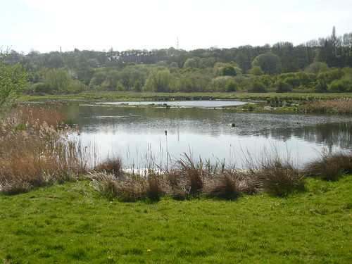 Rodley lake