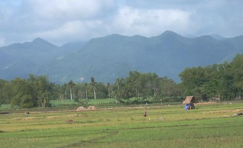 Panay-Roxas-Estancia-Iloilo (7)