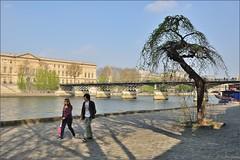 Paris : Walk   Malaquais quay (Pantchoa) Tags: paris seine puente nikon pont pontdesarts d90 quaimalaquais photosandcalendar nikonpassion nikonflickraward peopleenjoyingnature pantchoa