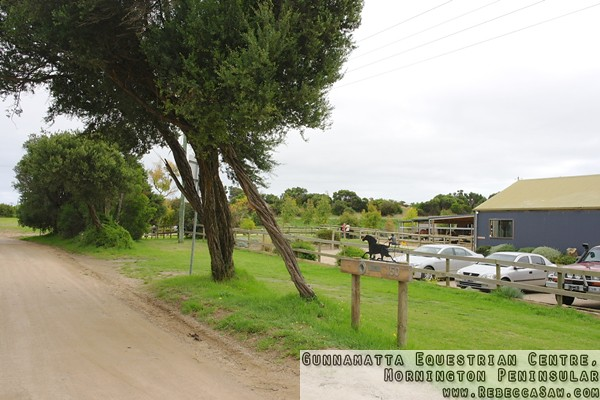 Gunnamatta Equestrian Centre, Mornington Peninsular-1