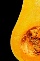 Cinderella (lynn.h.armstrong) Tags: camera orange ontario canada black art yellow lens geotagged photography soup photo interesting mac aperture nikon long flickr open zoom cut south curves seeds lynn h round squash inside nikkor armstrong hollow stormont vr butternut afs gettyimages dx sault ingleside 2011 ifed 18200mm f3556 curried attributionnoderivs vrii allrecipescom d7000 ccbynd lynnharmstrong requesttolicence