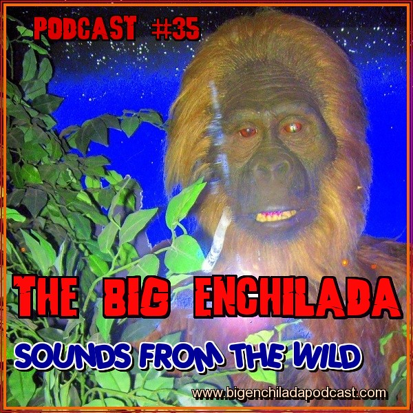 PODCAST 35 SOUNDS FROM THE WILD