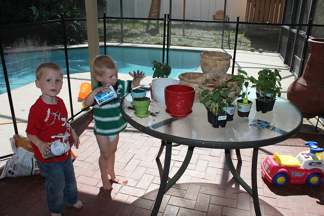 Planting Our Little Garden