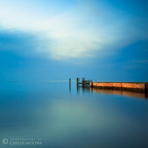 GOLD & BLUE by carlosm76