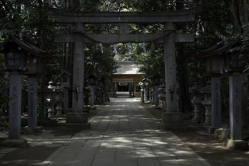 Nagareyama Apr 2011