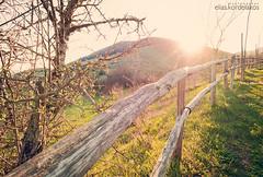 Backlit fence (Kordelakos) Tags: mountain grass backlight fence landscape afternoon wideangle 1024 d90