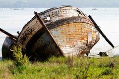 IMG_0964-M.jpg (Elisa_Rv) Tags: bateau moyendetransport