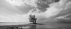 peninsula (tom_focus) Tags: water island insel shore bodensee lakeconstance