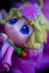 Sorceress of the Seasons Haru-chan Nendoroid (SirNarwhal) Tags: anime cute cat toy spring wand blueeyes adorable figure koi cherryblossoms gsc collectible nhk haru koifish japanesetoy nendo whispyhair haruchan goodsmilecompany pvcfigure nendoroid