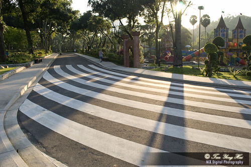 Long Zebra Crossing