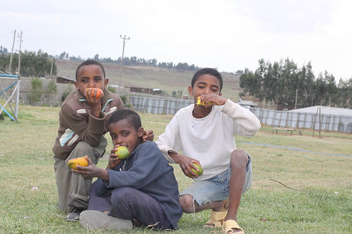 Ethiopia -344
