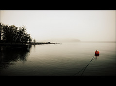 Tied to you (*Kicki*) Tags: mist water yearend fog sweden buoy dimma 2011 kicki roslagen grsk buoyant buoyantspotlight kh67