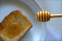 Toast with Honey  (Tomitheos) Tags: portrait food breakfast recipe dessert drops flickr image sweet sticky toast avatar picture optical plate pic daily foodporn honey photograph minerals brunch scrumptious hungry capture now today medicinal luster ridges sweetener clockwise rotate hellotoast entree stockphotography saccharine 2011 honeycombs honeystick threeoclock fermentedbeverage pouringhoney bytomitheos healinghoney