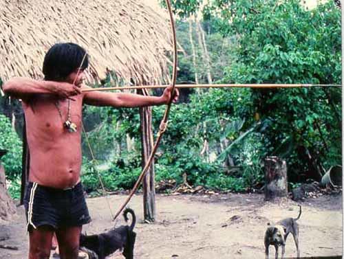 Hunter Gatherer Homes Amazonian Hunter-gatherer