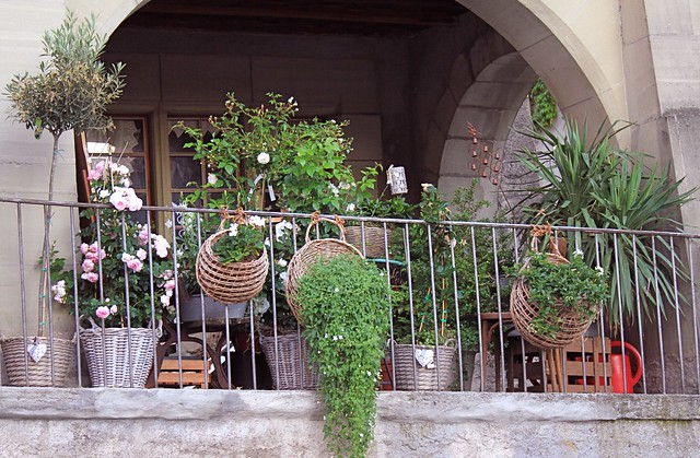 "Flowershop - ""Blanchefleur"" - Avenche (CH)"