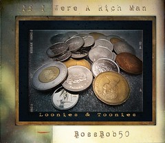 If I Were a Rich Man - A book - by BossBob50