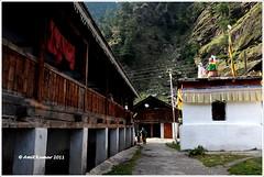 Lanes of Bagori (Visual Vibrations) Tags: india hills himalaya gangotri harshil dharali mukhba bagori mukhwa baghori
