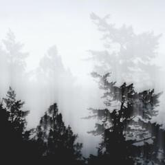 ghost-trio