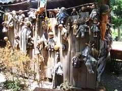 Xochimilco Mexico - Island of the Dolls - Wall of Death (ramalama_22) Tags: city rotting strange wall mexico island death weird dolls unique creepy spooky unusual sick isla bizarre mangled drowning ciudaddemexico xochimilco muecas mutilated dismembered