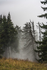 Mist (Miroslava Balazova LAZAROVA) Tags: forest nature landscape beauty slovakia janska dolina mist trees mountain rock hiking view