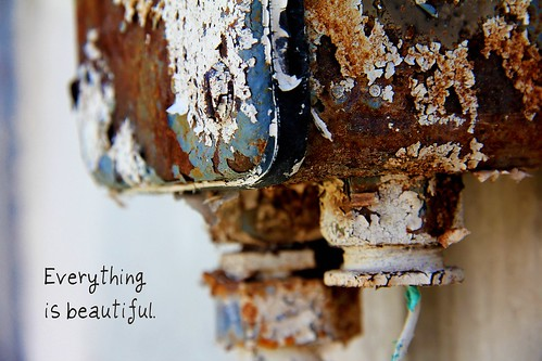 Day 81:  Everything is Beautiful
