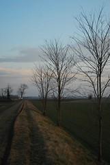 Argine (Michi (Friuli)) Tags: verde alberi relax photo nikon italia tramonto foto natura campagna erba spine turismo friuli caccia campi solitudine pasquetta percoto trivignano torrentetorre