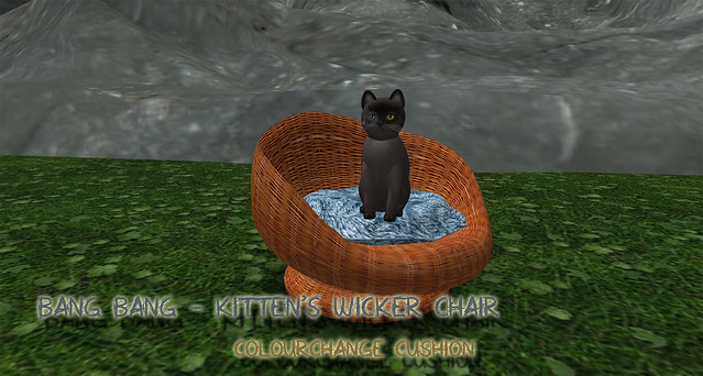 Bang Bang - Kitten's Wicker Chair