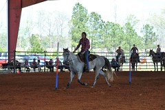 Clinton Arena Horse Show 21/30 (Marsh, D.) Tags: show horse woman