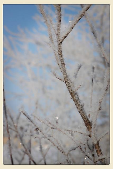 glitter-snow