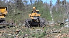 IMG_1501 (M.Bouzakine) Tags: forestry logging skidder fellerbuncher