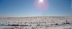 Olathe Prairie, Panoramic, 11 Jan 2011 (photography.by.ROEVER) Tags: autostitch kansas joco johnsoncounty january2011 johnsoncountyks