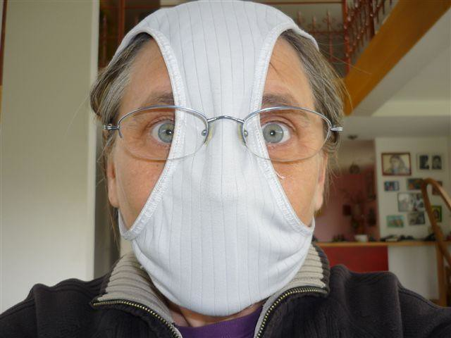 not-enough-money-for-an-h1n1-mask