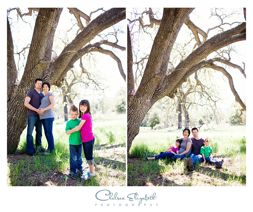 family portraits in a field