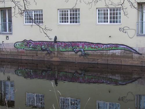 River lizard