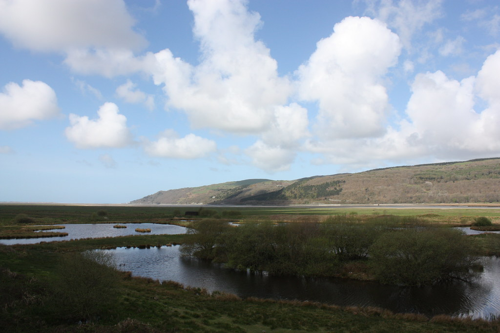 Image of the Ynys-hir RSPB Reserve in the Dyfi Biosphere