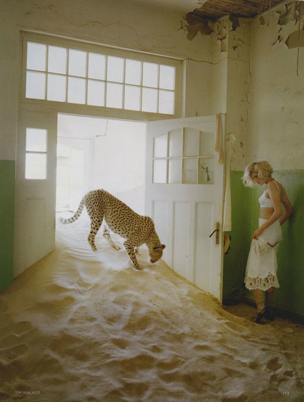 Agyness-Deyn-by-Tim-Walker-for-Vogue-UK-May-201104