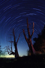 The Couple (samyaoo) Tags: taiwan   chiayi startrails  nantou