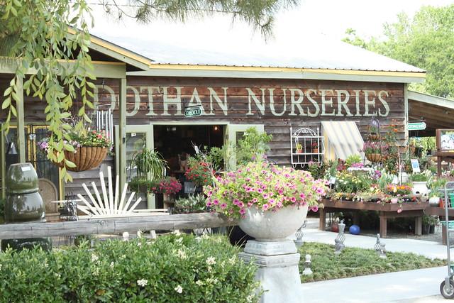 dothan nurseries 018
