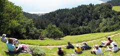 Mt Tamalpais State Park: Coastal Trail (Kwong Yee Cheng) Tags: autostitch coastaltrail mttamalpaisstatepark